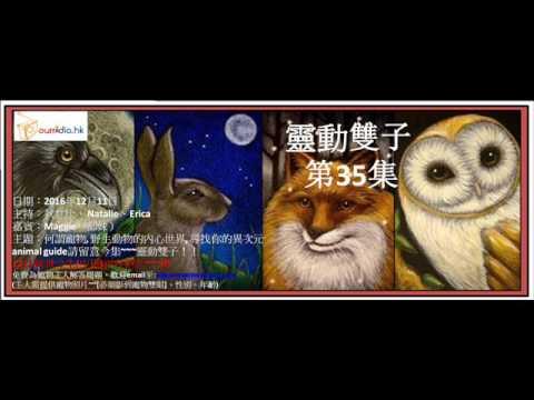 靈動雙子 第35集 (異次元animal guide)