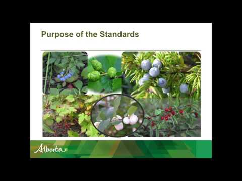 Lee Charleson - Alberta Forest Genetic Resource Management & Conservation Standards (FGRMS)