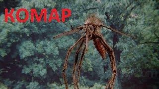 УЖАСЫ !!! Комар . Смотреть Онлайн . 2018