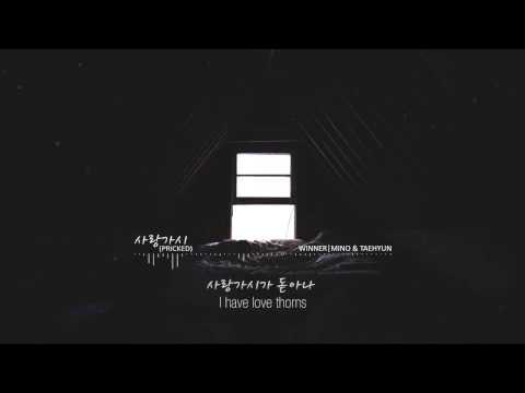 사랑가시 (Pricked) - WINNER (Mino & Taehyun) ENG/HAN