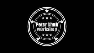 Peter Shub workshop