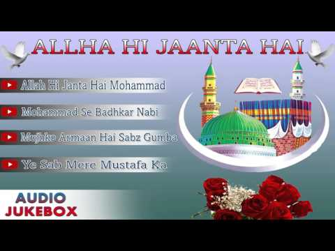 Allah Hi Janta Hai Full Album Songs-Audio Jukebox | Superhit Qawwali Songs | Azim Nazan
