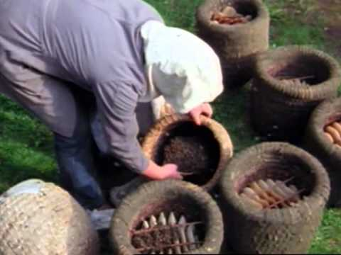 4 Work in a heather skep apiary during the cast swarming period E2962