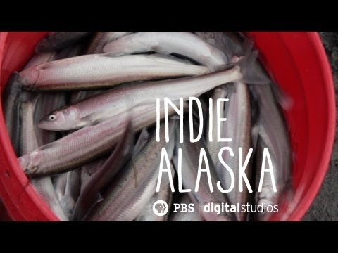 I Am A Hooligan Fisherman | INDIE ALASKA