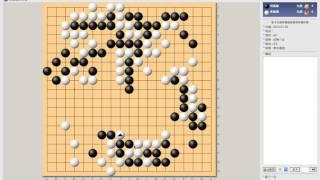 小小林圍棋講座48:韓國傳奇賽-李昌鎬vs劉昌赫