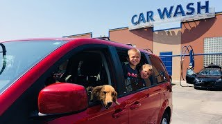 Kids Drive Car to Car Wash With Their PUPPY! SKIT