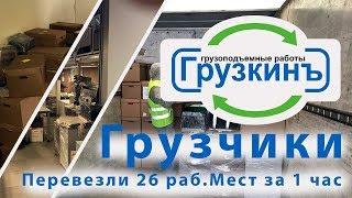 видео Грузчики в Санкт-Петербурге СПб