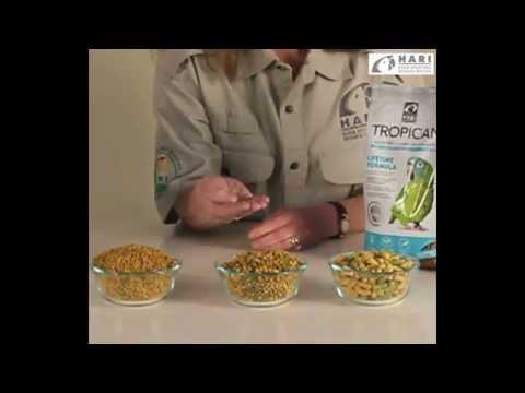 Tropican Lifetime Formula Food for Parrots