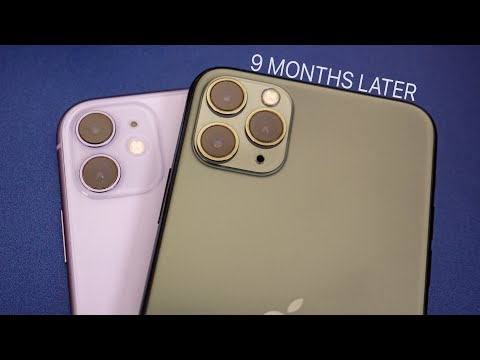 iphone-11-vs-iphone-11-pro-max---honest-thoughts-after-9-months!