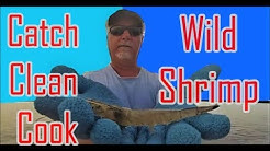 Catch Clean and Cook Wild Florida Shrimp