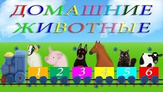 Изучение животных, цвета, цифр. Развивающие мультики