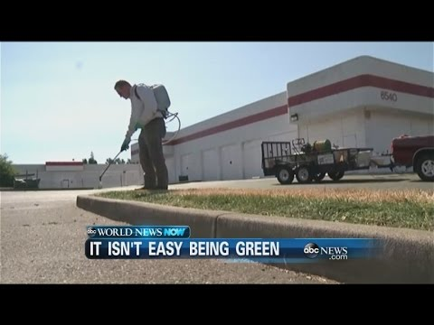 WEBCAST: Painting Grass Green