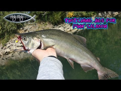 """""""How to""""   Twitching jigs for Pink Salmon"""