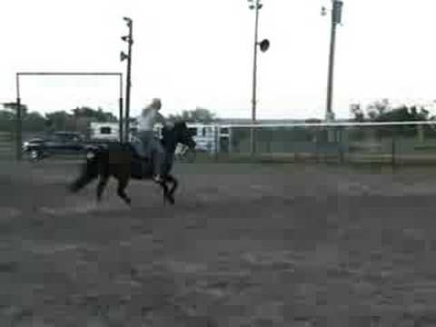 Cows Replacement Barrel Racer Billy