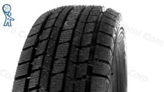 Видеообзор шины Dunlop Graspic DS3 - [Autoshini.com]