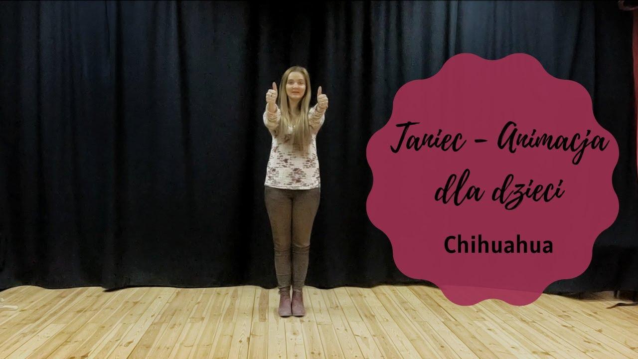 Chihuahua - zabawa taniec dla dzieci, animacja