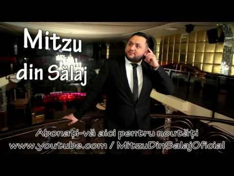 Mitzu din Salaj - Iti multumesc mult nevasta ( Audio ) Tel +40784421000