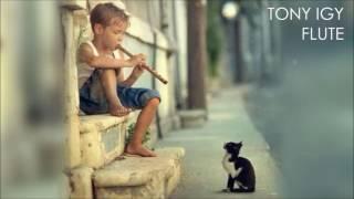 Tony Igy Flute