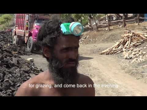 Coal mine donkeys of Pakistan documentary