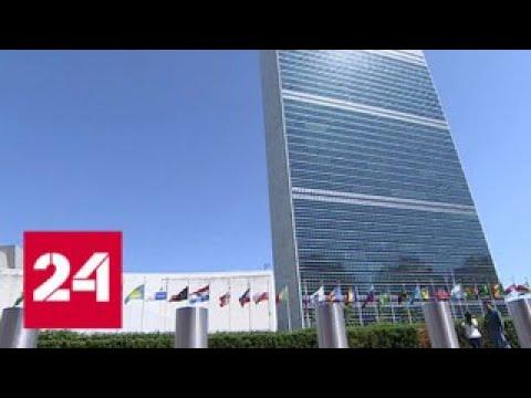 Голосование в СБ ООН: США остались в одиночестве - Россия 24