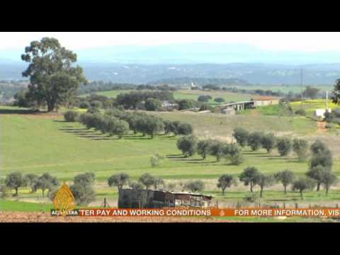 Portuguese youth turn to farm work