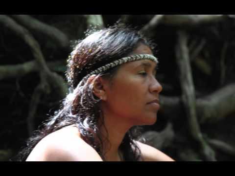 Ayahuasca Música - Cantos de la Ceremonia de Ayahuasca - Ayahuasca Icaros
