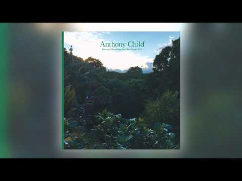 07 Anthony Child - The Chief [Editions Mego]