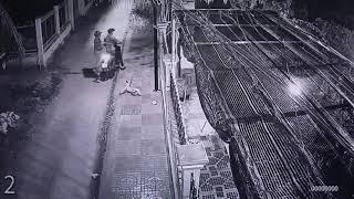 CLIP Hai kẻ trộm chó trong đêm