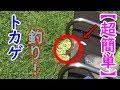 【トカゲ釣り】トカゲを超簡単に捕まえる方法!!-Lizard Fishing-