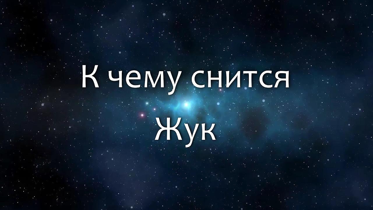 К Чему Сниться Убивать Жуков