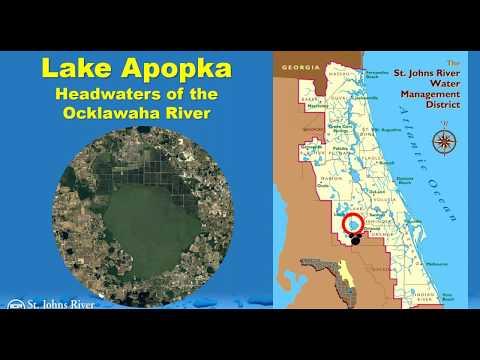 Restoration Of Lake Apopka (Florida) And Surrounding Wetlands
