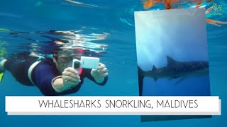 Maldives, South Ari Atoll, Barbara Blunschi, Reisen & Lifestyle Videos De Viajes