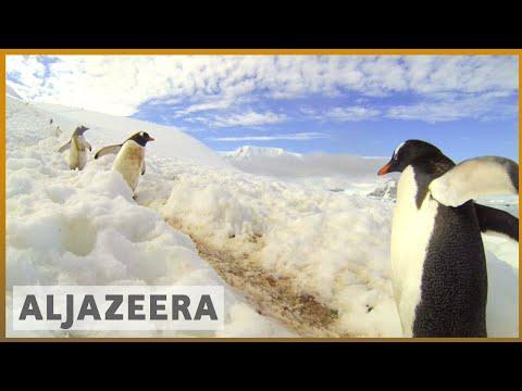 🇦🇶Weddell Sea: China, Russia block Antarctic ocean sanctuary plan