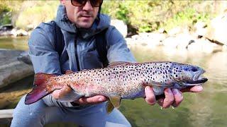 Рыбалка на Форель Ловля дикои форели на быстрои реке Рыбалка в Карпатах 1 серия