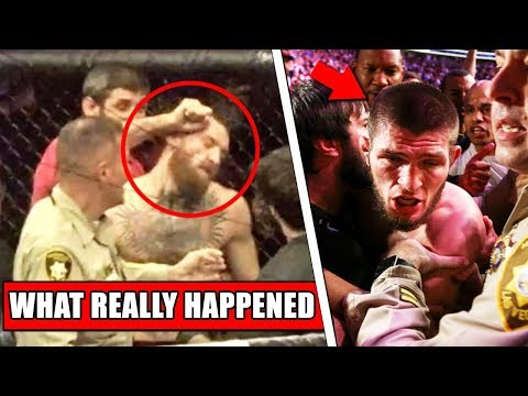 Dickerman - UFC 229 Post Fight Brawl Broken Down