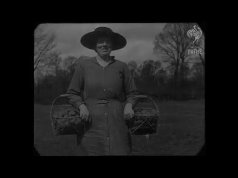 1917 - Women & children workers during WWI (speed corrected w music)