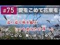 愛をこめて花束を / Superfly カラオケ【歌詞・音程バー付き / 練習用】