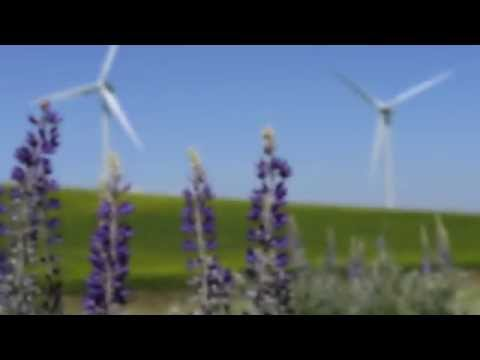 Columbia County Wind Facility Hunting & Recreational Access Guidelines