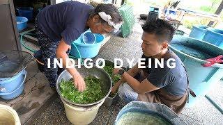 Indigo Dyeing with fresh indigo leaves // 生葉で藍染