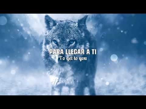 Top 5 canciones en inglés para dedicar (traducido a español)