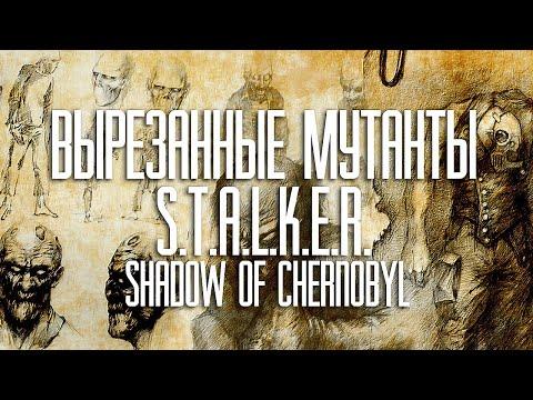 Книги сталкер Stalker