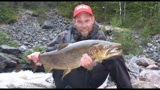 Få FLERE og STØRRE ØRRETER - Tips om ørretfiske med Inge og Anders fra Rapala Pro Guide