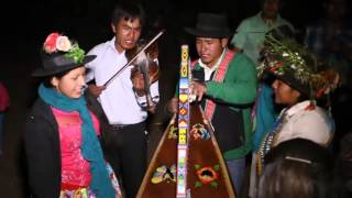 Cristalina de Vilcashuamán, Gavilán de Patahuasi, Ochoa de Cayanto - Quilla 2015