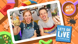 How To Look After Pets | Pets Week 1 | #65 LET'S GO LIVE with Maddie and Greg