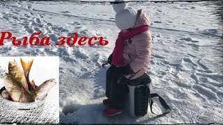 ЭТОТ РЫБАК ОБЛОВИТ ЛЮБОГО Первая зимняя рыбалка дочери