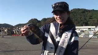 南伊勢町奈屋浦の波止ショアジギング(2018年12月1日放送)