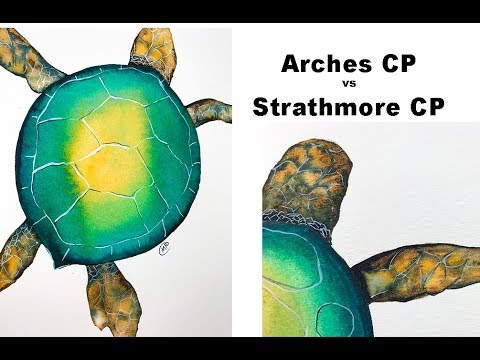 Arches vs Strathmore Watercolor Paper Painting Sea Turtles