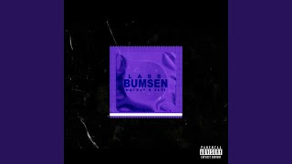 Lass bumsen (Remix)