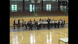 Flötenorchester Rhythm & Flutes Saar bei der DM 2013 in Chemnitz