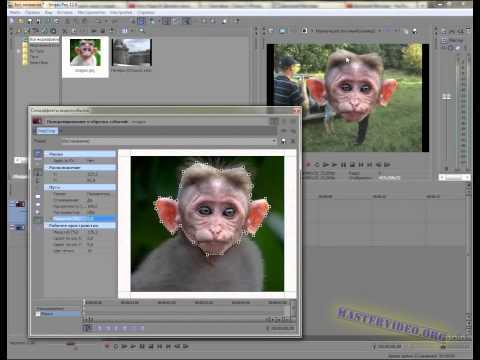 видео: sony vegas 18. Замена лица в видео. (troll face)
